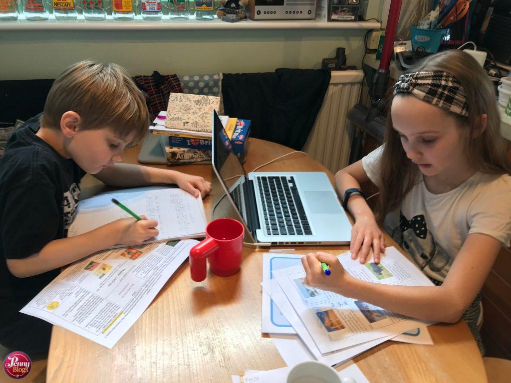Corona Diary home school
